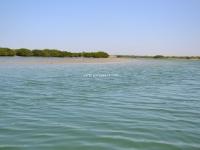 Excursion Delta Sine Saloum