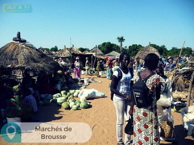 MarcheBrousse-Nianing-excursion.com